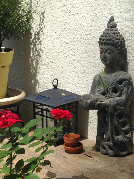 buddha_mantis