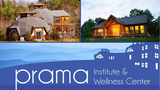Prama Institute
